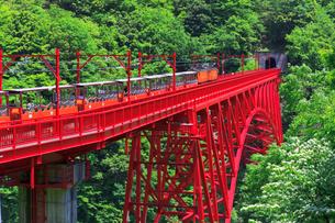新緑の黒部渓谷鉄道 トロッコ列車の写真素材 [FYI03835694]