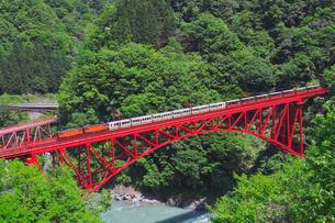 新緑の黒部渓谷鉄道 トロッコ列車の写真素材 [FYI03835695]