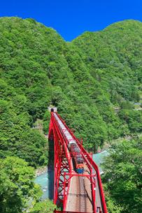 新緑の黒部渓谷鉄道 トロッコ列車の写真素材 [FYI03835696]