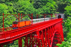 新緑の黒部渓谷鉄道 トロッコ列車の写真素材 [FYI03835699]