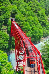 新緑の黒部渓谷鉄道 トロッコ列車の写真素材 [FYI03835701]
