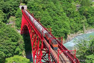 新緑の黒部渓谷鉄道 トロッコ列車の写真素材 [FYI03835703]