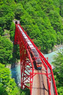 新緑の黒部渓谷鉄道 トロッコ列車の写真素材 [FYI03835704]