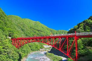 新緑の黒部渓谷鉄道 トロッコ列車の写真素材 [FYI03835705]