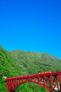 新緑の黒部渓谷鉄道 トロッコ列車の写真素材 [FYI03835710]