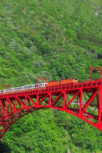 新緑の黒部渓谷鉄道 トロッコ列車の写真素材 [FYI03835711]