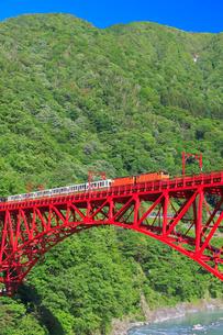 新緑の黒部渓谷鉄道 トロッコ列車の写真素材 [FYI03835714]