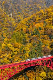 黒部峡谷鉄道 新山彦橋とトロッコ電車の写真素材 [FYI03835971]