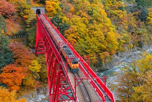 黒部峡谷鉄道 新山彦橋とトロッコ電車の写真素材 [FYI03835983]