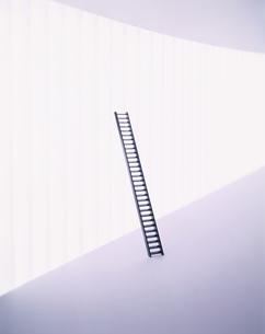 梯子の写真素材 [FYI03836767]