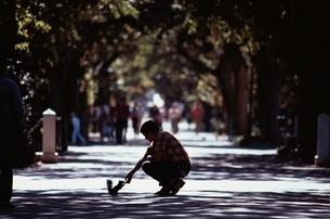 リスに餌を与える男性 ケープタウン 南アフリカの写真素材 [FYI03837409]