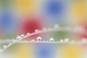 交差するカラフルな水滴の写真素材 [FYI03837632]