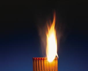 引火したマッチの炎の写真素材 [FYI03837678]