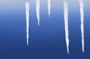 氷イメージの写真素材 [FYI03837730]