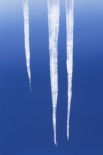 氷イメージの写真素材 [FYI03837731]