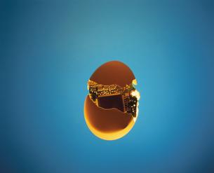 発光する玉子の中のパソコン基盤の写真素材 [FYI03837877]