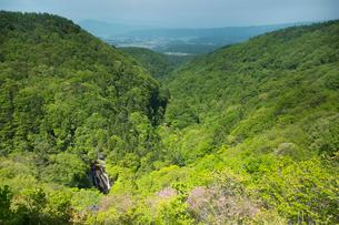 新緑の森と王滝の写真素材 [FYI03838236]