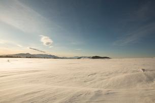 冬の美ヶ原高原より蓼科山と八ヶ岳連峰を望むの写真素材 [FYI03838289]
