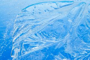 氷の模様の写真素材 [FYI03838421]