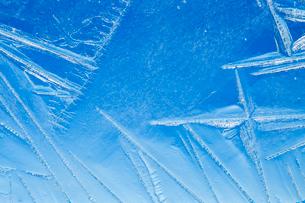 氷の模様の写真素材 [FYI03838439]
