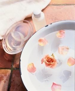 バラを浮かべたお湯の写真素材 [FYI03838548]