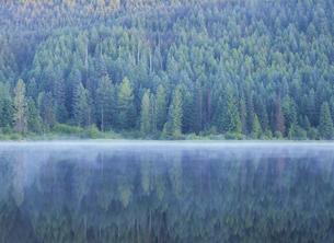 オレゴン州の湖と森林 アメリカの写真素材 [FYI03838892]