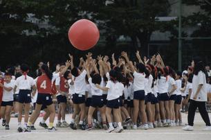 運動会の大玉競争をする日本の小学生たちの写真素材 [FYI03839173]