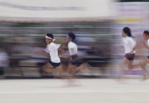 運動会で走る子供たちの写真素材 [FYI03839185]