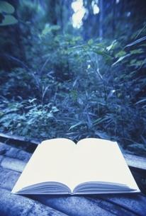 森と開いた1冊の本 三原市 広島県 8月の写真素材 [FYI03839310]