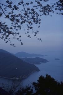 田島の桜と山と瀬戸内海 福山市 広島県の写真素材 [FYI03839321]