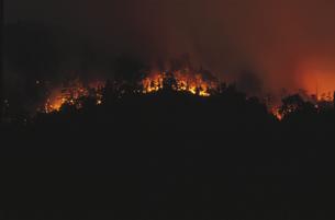 夜の山火事 竹原市 広島県の写真素材 [FYI03839381]