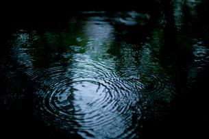 水面と波紋の写真素材 [FYI03839611]