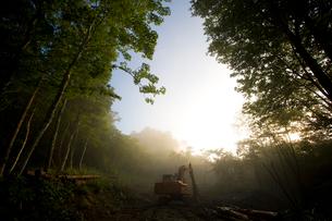霧の中のパワーショベルの写真素材 [FYI03839636]