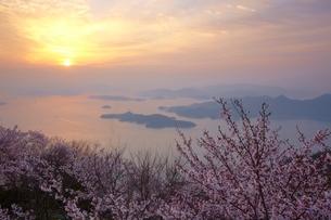 朝の瀬戸内海と桜の写真素材 [FYI03839715]