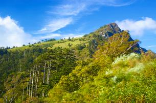 山と揺れる木と青空の写真素材 [FYI03839859]