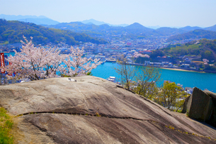 桜の千光寺公園と鼓岩の写真素材 [FYI03839924]