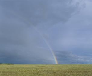 草原の虹  モンゴルの写真素材 [FYI03840024]