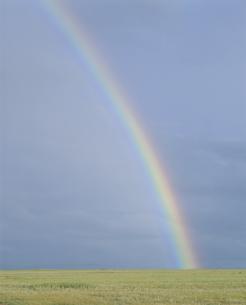 草原の虹 モンゴルの写真素材 [FYI03840025]