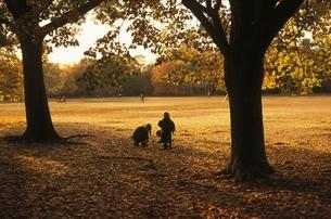 セントラルパークの子供 ニューヨーク アメリカの写真素材 [FYI03840209]