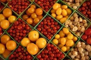店頭のトマトとほうずきの写真素材 [FYI03840232]