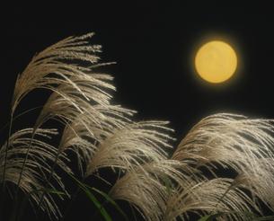 ススキと満月の写真素材 [FYI03840320]