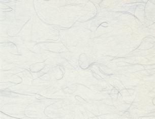 和紙の写真素材 [FYI03840347]