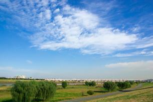 荒川河川敷と青空の写真素材 [FYI03840798]
