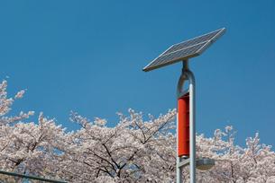 太陽光発電と風力発電のハイブリッド街灯の写真素材 [FYI03840882]