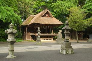 玉敷神社神楽殿の写真素材 [FYI03840917]