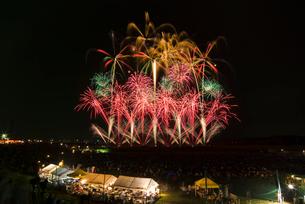 常総きぬ川花火大会 ハナビリュージョンの写真素材 [FYI03840974]