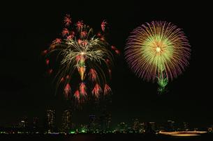 東京湾大華火祭 昇小花燻し銀の華と昇小花八重芯錦牡丹紫光露の写真素材 [FYI03841081]