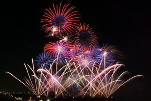 常総きぬ川花火大会 絢爛豪華なハナビリュージョンの写真素材 [FYI03841106]