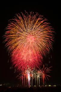 とりで利根川花火大会のワイドスターマインの写真素材 [FYI03841232]