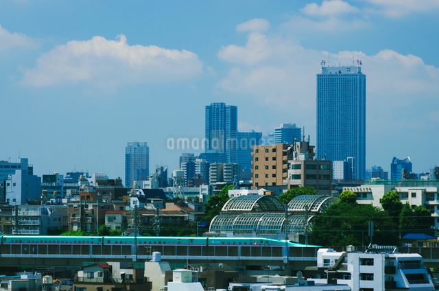 東京を走る東北新幹線はやぶさE5系池袋方面望むの写真素材 [FYI03841246]